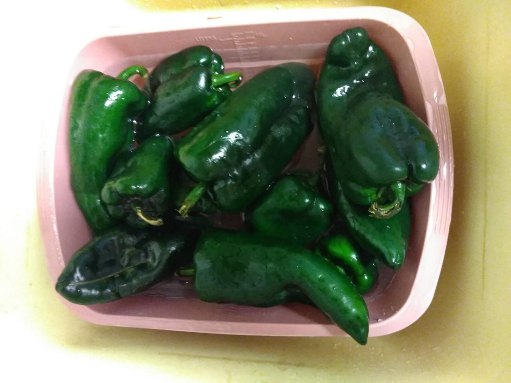 Poblano chiles in a plastic basin.