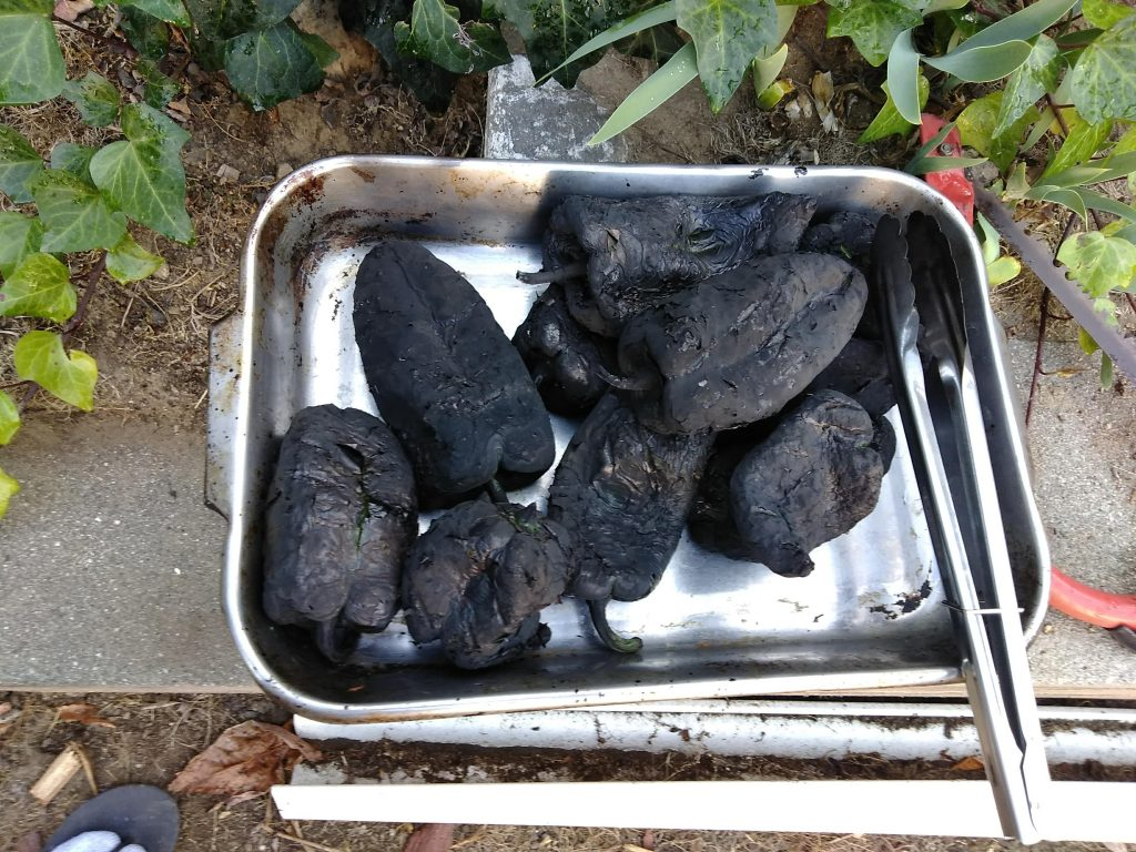 Soot and char covered chilis.